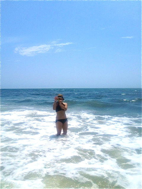 seaweed & beach!