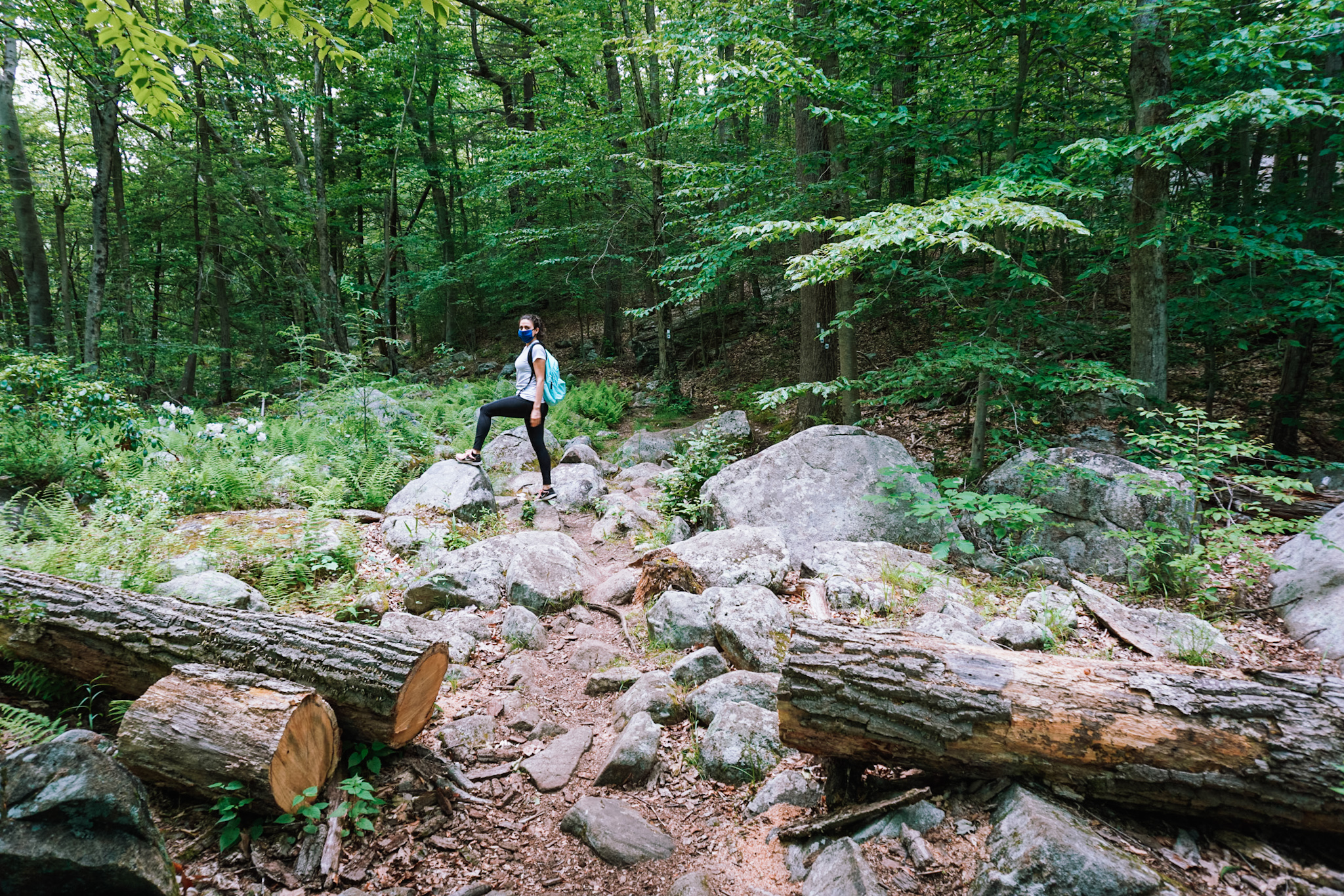 hiking at harriman state park